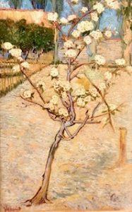 Het Perenboompje, 1888
